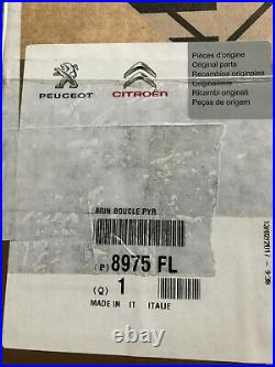 Citroen Relay 3 Peugeot Boxer Mk 3 Front Seat Belt Buckle! Genuine! 8975fl